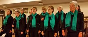 Threshold Choir of the Palouse provides gentle music for the Friends of Hospice Annual Tree of Lights Remembrance Ceremony 12-6-2016